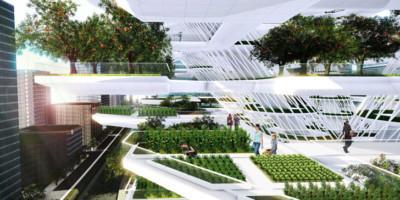 urbanskyfarm