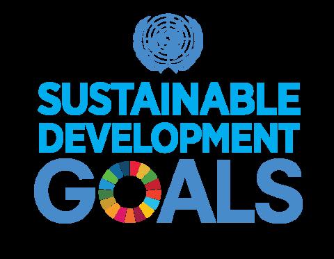 Goede SCORE Nederland op 5 ontwikkelingsdoelen