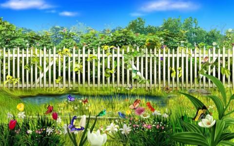 Biodiversiteit: verlangend naar een wei met bloemen en vlinders [view]