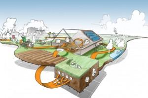 Boeren met een circulaire en duurzame boerderij