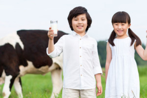 Yili, het grootste zuivelbedrijf van China (en Azië), opende nieuw innovatiecentrum in Wageningen.