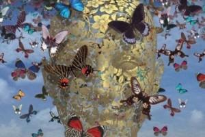 Empathie, de sociale lijm van evolutie
