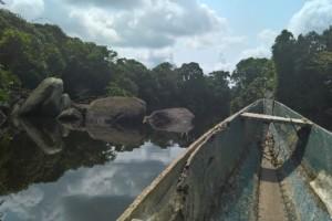 Han Bekkers in Kameroen