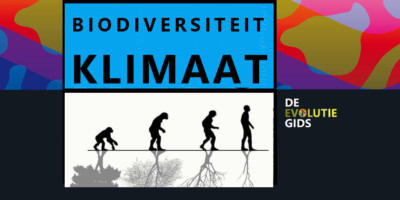Klimaatuitdaging biodiversiteit