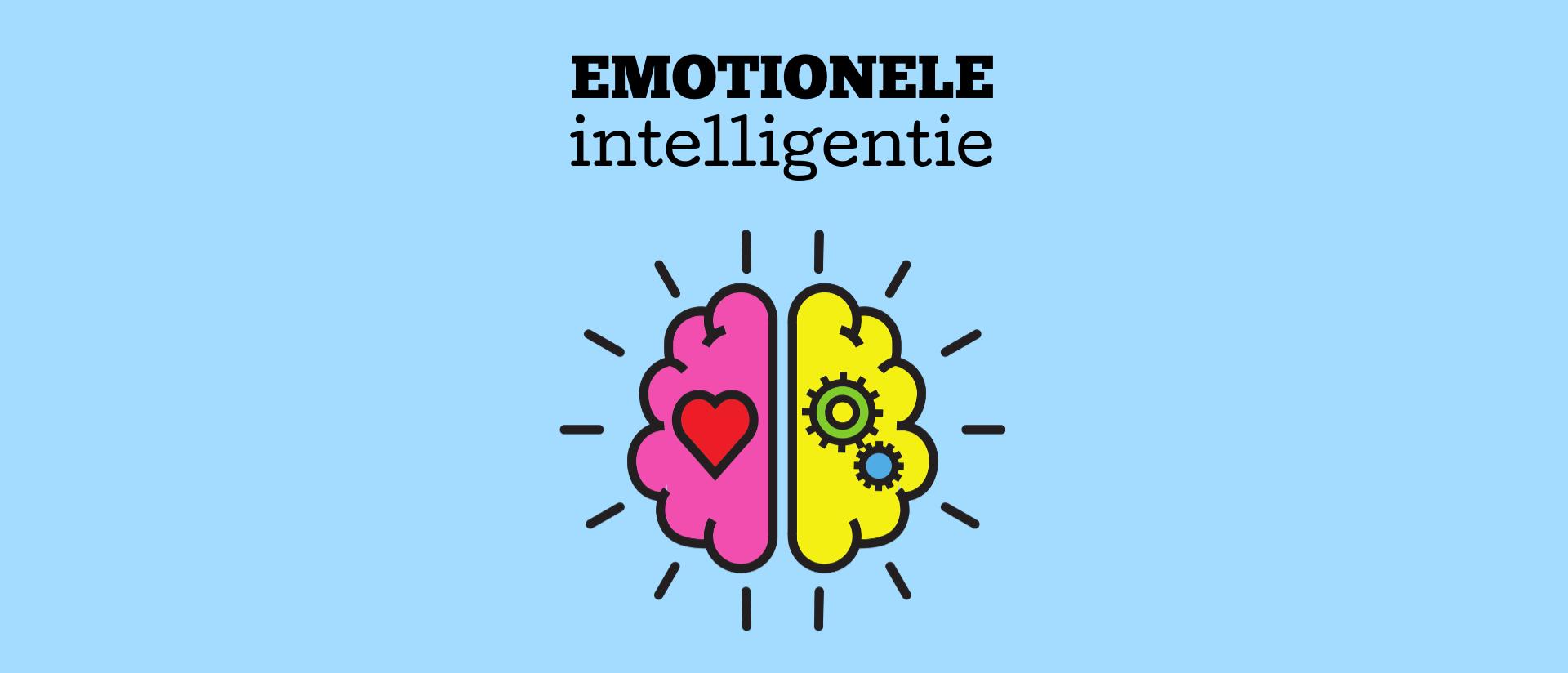 Emotionele intelligentie van leiders in de Evolutiegids