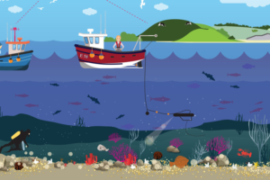 holistisch oceaanbeheer in de Evolutiegids