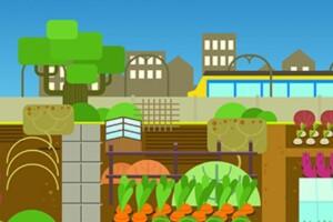 Stadslandbouw in de Evolutiegids