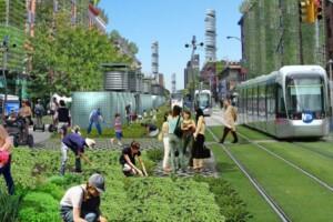 de groene stad in De Evolutiegids