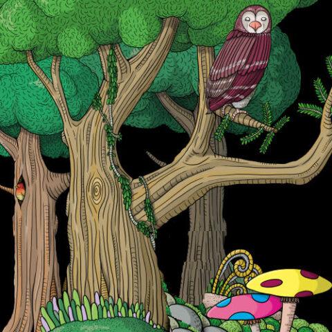 Tiny Forests in De Evolutiegids